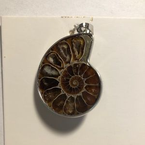 "Womens fossil pendant. NEW 1/34"" x 1"""